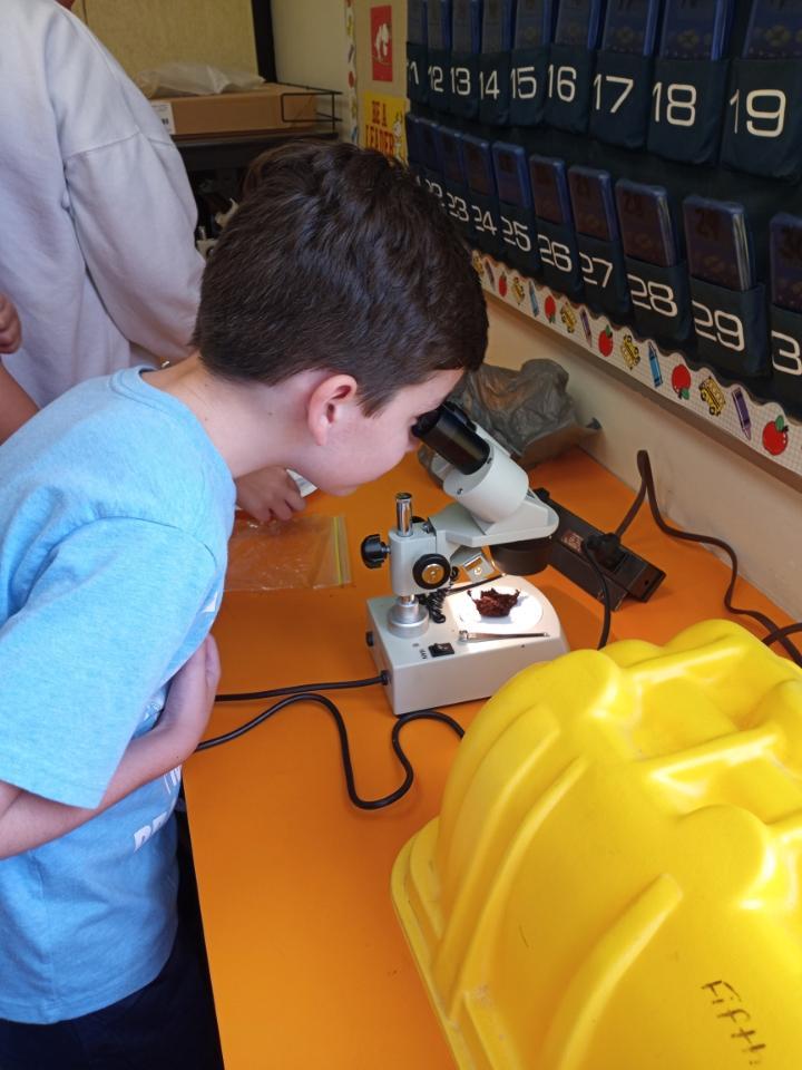 5th Graders Viewing Fungus – Microslide Lab