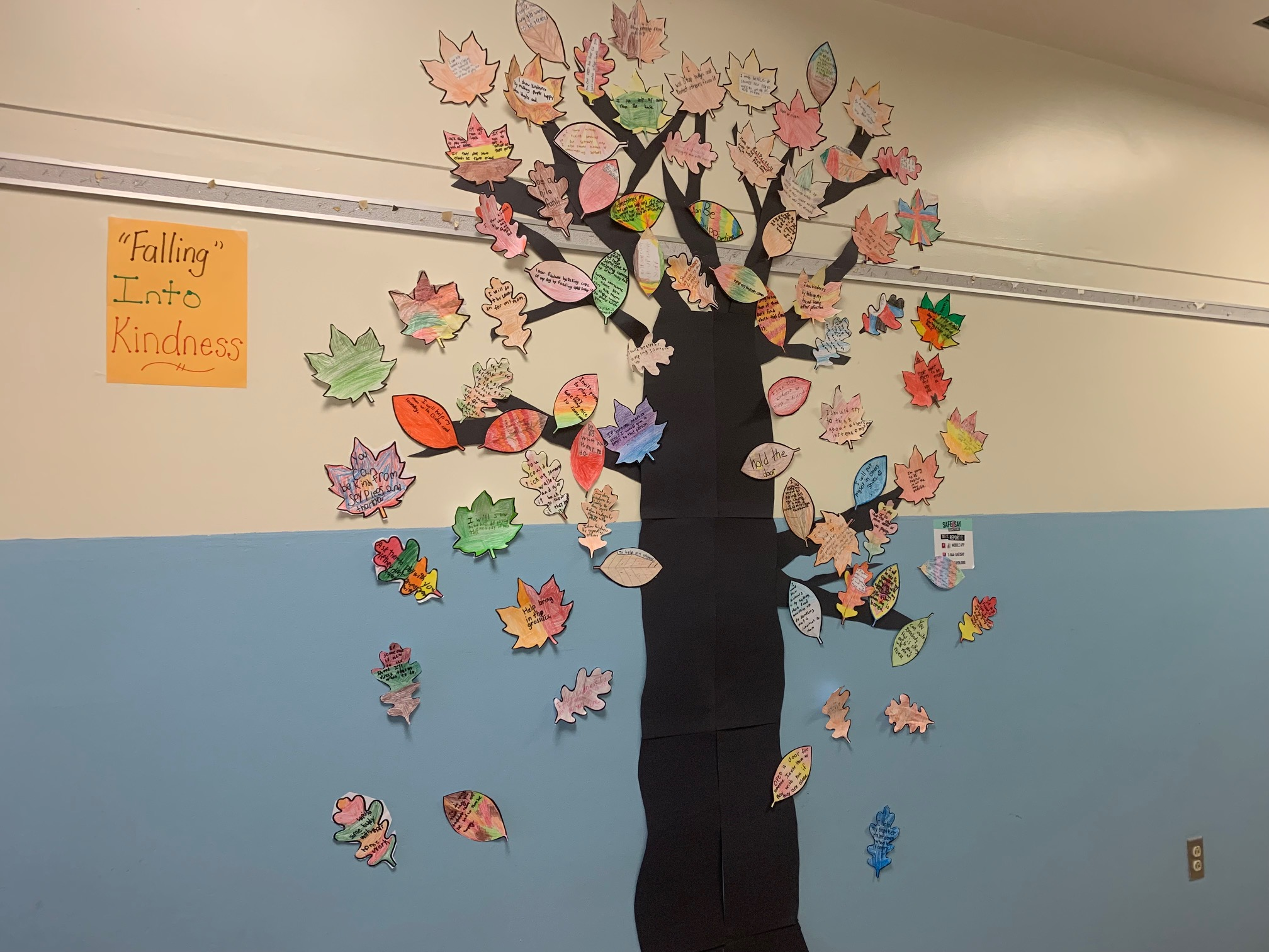 """5th Grade students and teachers created a """"Kindness Wall"""""""